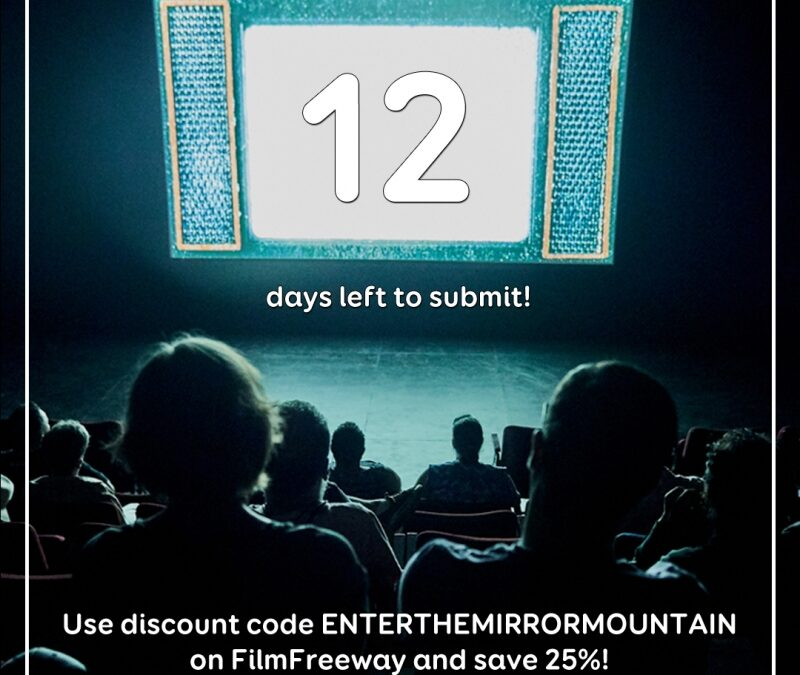 12 days left to submit!